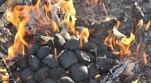 Laporan praktikum briket arang berbasis cangkang kelapa sawit bertujuan: 1. Untuk mengetahui kadar air yang terkandung pada briket arang dari cangkang kelapa sawit. 2. Untuk mengetahui kadar zat mudah menguap (ZMM) pada briket arang dari cangkang kelapa sawit. 3. Untuk mengetahui kadar abu pada briket arang dari cangkang kelapa sawit. 4. Untuk mengetahui kadar karbon terikat pada briket arang dari cangkang kelapa sawit.