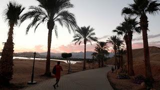 بيزنس إنسايدر: مصر أبرز وجهة سياحية لمليارديرات العالم في 2019