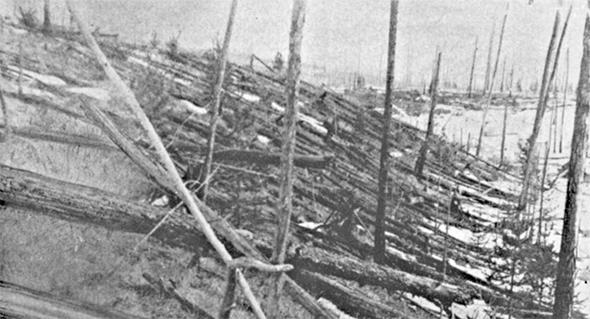 Árboles aplastados por el bólido de Tunguska, en Siberia
