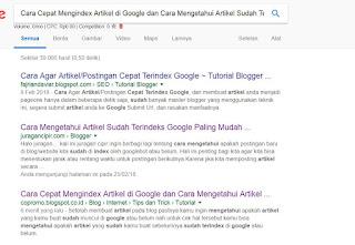 Artikel yang saya buat sudah terindex di google