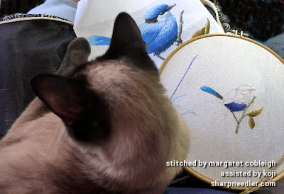 Koji, my Siamese cat, sitting in my lap whilst I try to stitch my bird