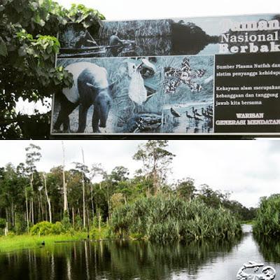Tempat Wisata Taman Nasional Berbak