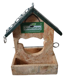 bird fruit & nut feeder ahmedabad