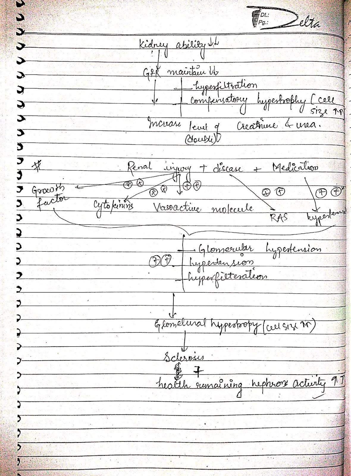 pathophysiology - renal disorder chronic renal failure