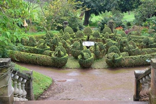 Funchal Palheiro Bahçeleri