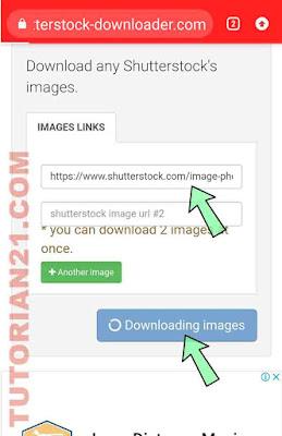 Cara Download Shutterstock Gratis : download, shutterstock, gratis, Download, Gambar, Shutterstock, Tanpa, Watermark