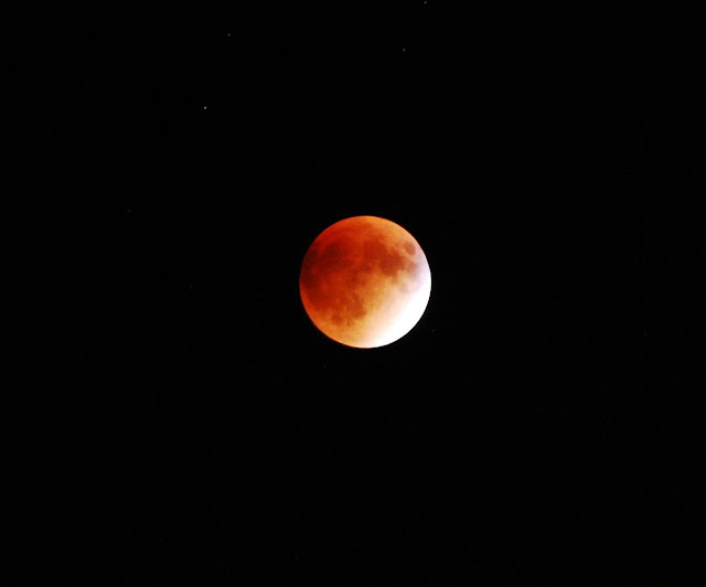 blood moon 2019 ohio - photo #36