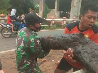 Bergerak Bersama Atasi Tumpukan Sampah Di Sungai Tripolo