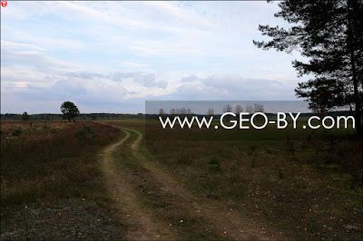 Налибокская пуща. Дорога у деревни Заборье