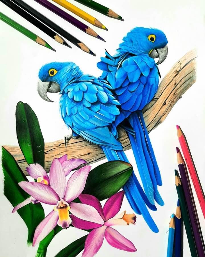 01-Hyacinth-Macaw-Bele-www-designstack-co