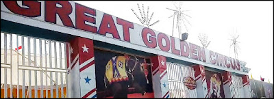 Great Golden Circus photos
