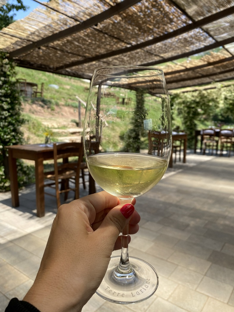 I vini di Montevecchia dell'agriturismo La Costa