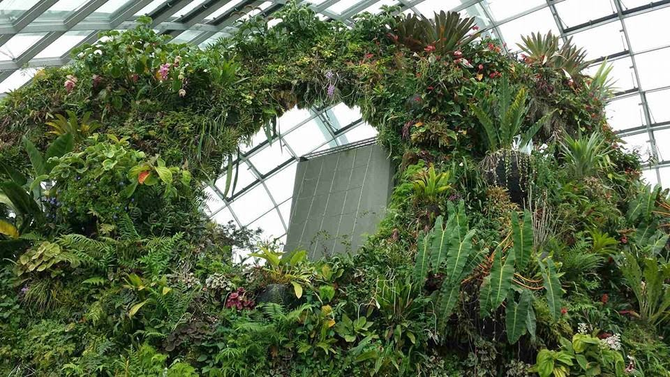 Planted Walls at Cloud Forest Gardens by the Bay Singapore