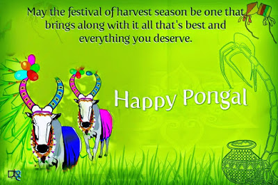 Happy Pongal Wishes Greetings Quotes for Family and Relatives 2021