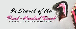 https://www.gofundme.com/myanmar-pink-headed-duck-2017