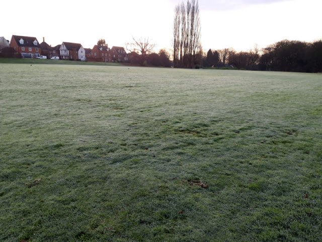 A frosty grass field with the sunrise and houses in the distance