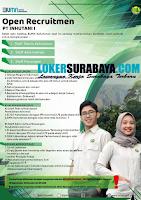 Open Recruitment at PT. Inhutani I (BUMN) September 2020