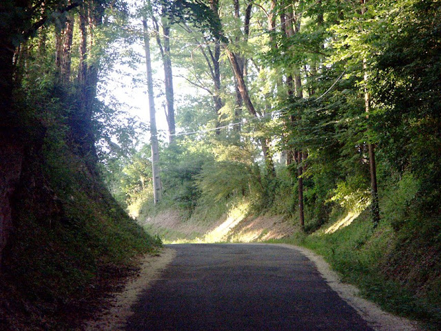 Communal road.  Indre et Loire, France. Photographed by Susan Walter. Tour the Loire Valley with a classic car and a private guide.