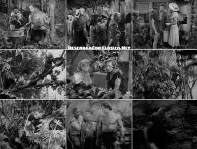 Tarzán y la fuente mágica (1949) Tarzan's Magic Fountain
