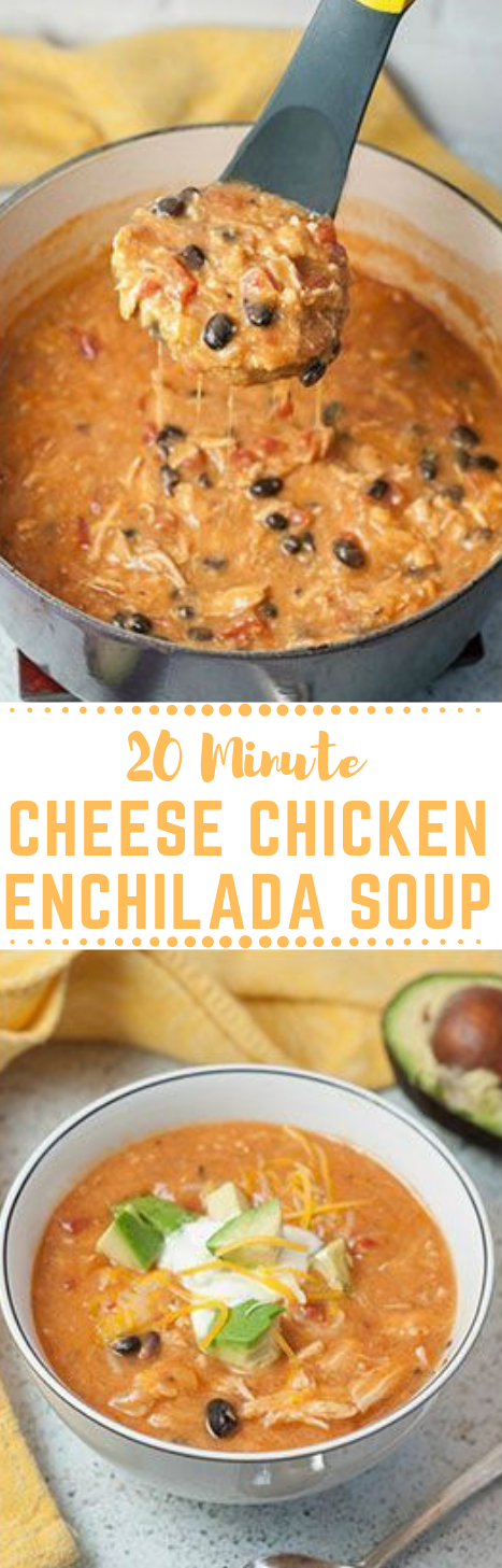 20 Minute Cheesy Chicken Enchilada Soup #soup #dinner #whole30 #lunch #food