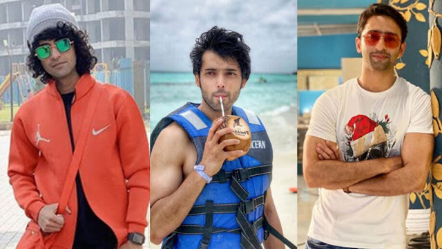 Sumedh Mudgalkar, Parth Samthaan, And Shaheer Sheikh Will Leave You Stunned on Instagram