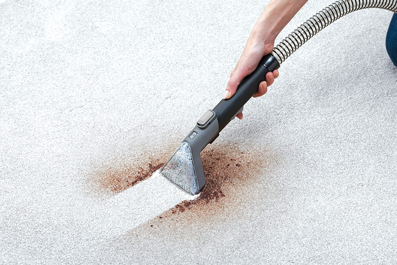 carpet stain reomal