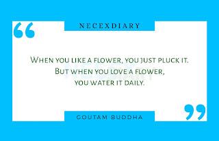 buddha love quotes #5