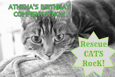 tabby cat in black and white Rescue Cats Rock graphic commentathon