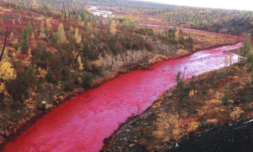 Brutal contaminación de río ruso
