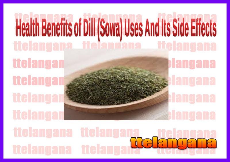 Health Benefits of Dill (Sowa) Uses And Its Side Effects