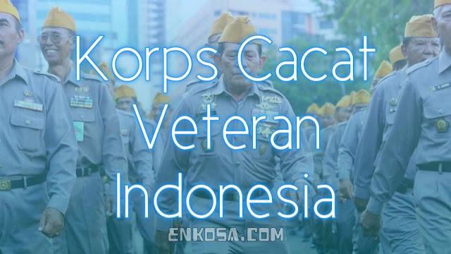 Sejarah Hari Korps Cacat Veteran Indonesia 19 Mei