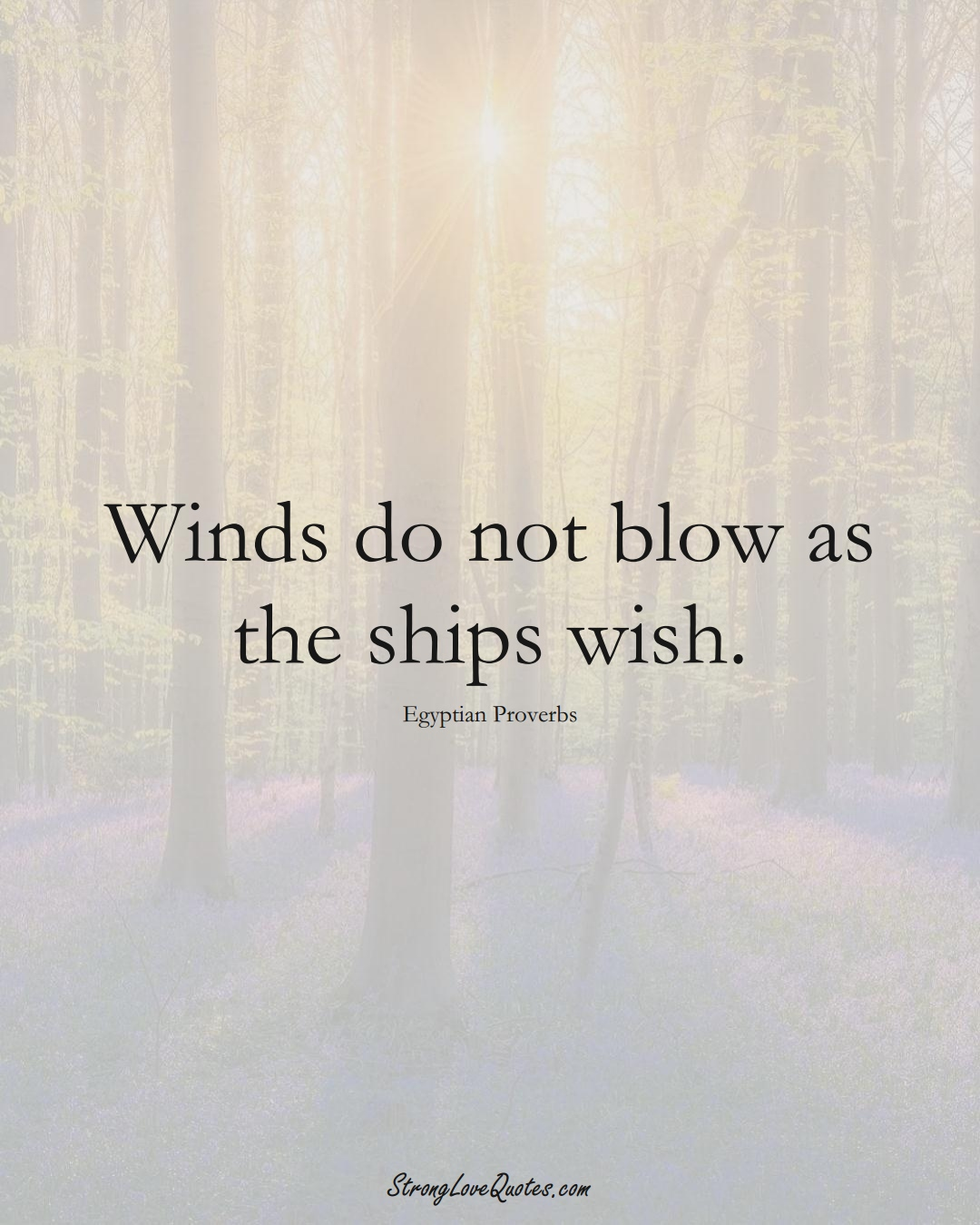 Winds do not blow as the ships wish. (Egyptian Sayings);  #MiddleEasternSayings