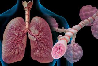 http://ayurvedacoursesindia.com/asthma/index.html