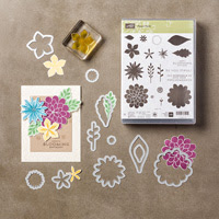 http://www.stampinup.com/ECWeb/ProductDetails.aspx?productID=136788
