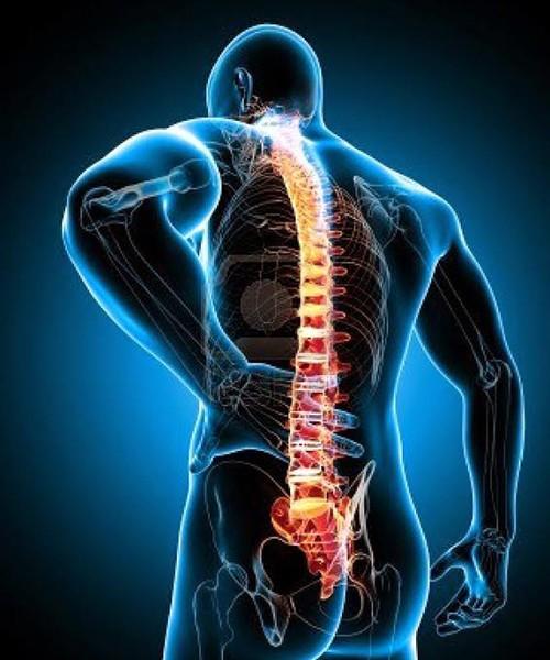 Dolor parte baja de la espalda biodescodificacion