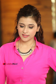 Actress Mannar Chopra in Pink Top and Blue Skirt at Rogue movie Interview  0170.JPG
