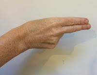 A hand finger-spelling the letter H.