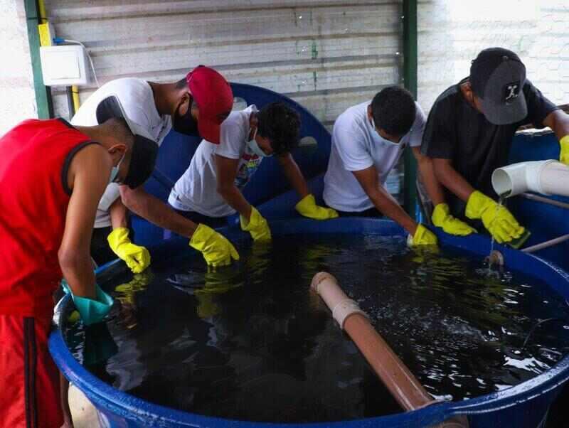 Em um dos abrigos temporários para refugiados e migrantes venezuelanos em Boa Vista, Julio Bastardo acorda para se encontrar com os amigos e realizar sua nova atividade favorita: cuidar do projeto de aquaponia do abrigo.