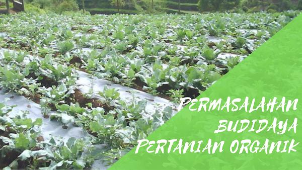 Permasalahan Budidaya dalam Pertanian Organik