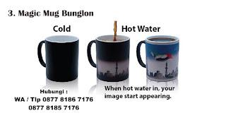 Hadiah Magic Mug Bunglon yang dibeli secara online untuk hadiah kepada orang yang special Selama Social Distancing