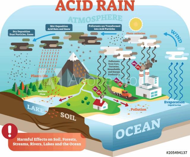 Acid Rain Definition, Reason, Effect &  Solution2