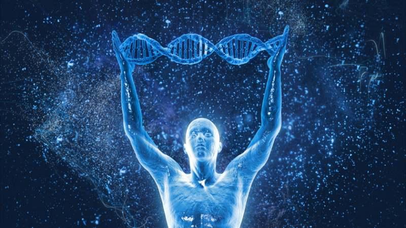 Con người đến từ trái đất hay một nơi xa xôi trong vũ trụ?