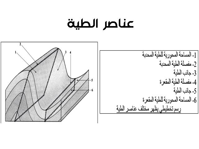 عناصر الطية