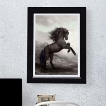 Horses Stallion Framed Print, Wall Frame, Art in Portharcourt Nigeria