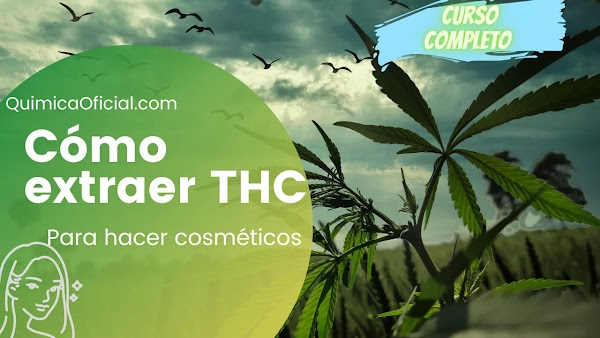 La manera más FÁCIL de EXTRAER THC de la Marihuana