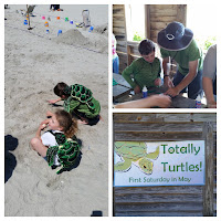 Totally Turtles Day at Myrtle Beach State Park