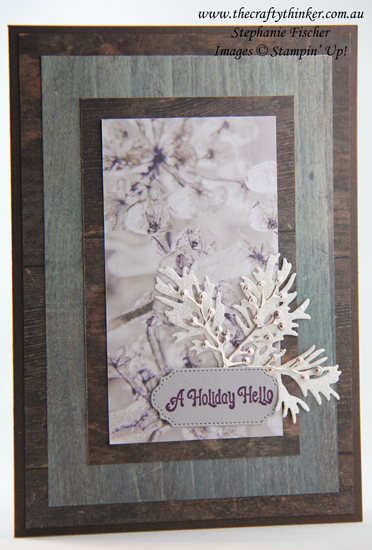 #thecraftythinker #stampinup #cardmaking #inkitstampitbloghop #christmascard , Ink It! Stamp It! Blog Hop, Christmas Card, Wood Textures, Frosted Bouquet, Stampin' up Demonstrator, Stephanie Fischer, Sydney NSW
