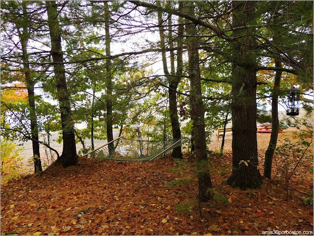 Hamaca en Lakeside Cedar Cabins en Maine