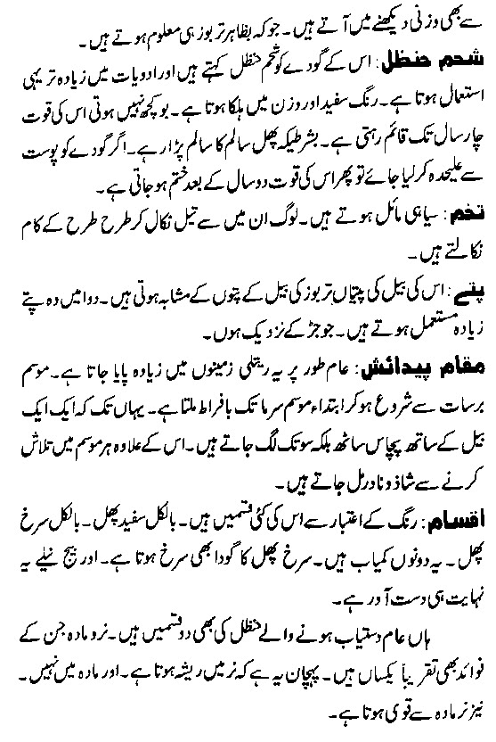 hikmat books Urdu