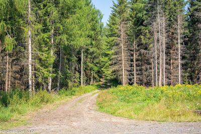 Rozdroże pod Leśnicą, ścieżka na Łysą Górę